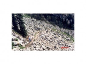 1349177-Old_rock_avalanches_on_the_hike-Mount_Revelstoke_National_Park